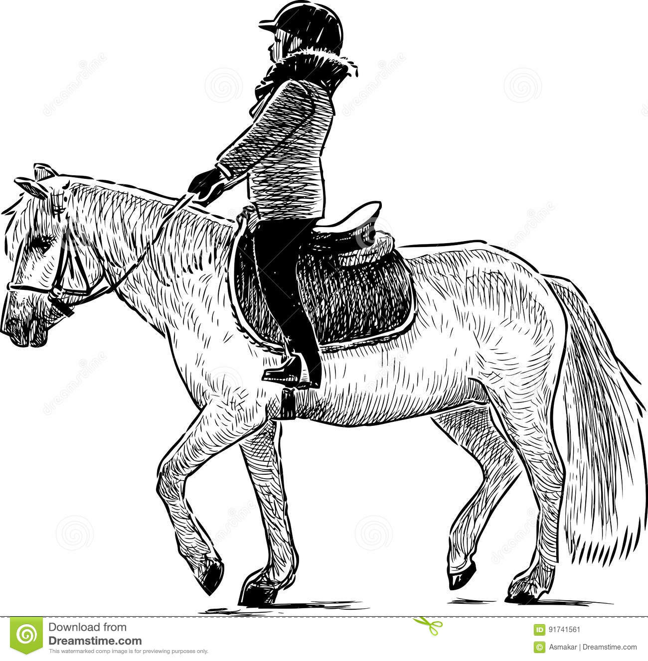 A Child Riding A Horse Stock Vector Illustration Of