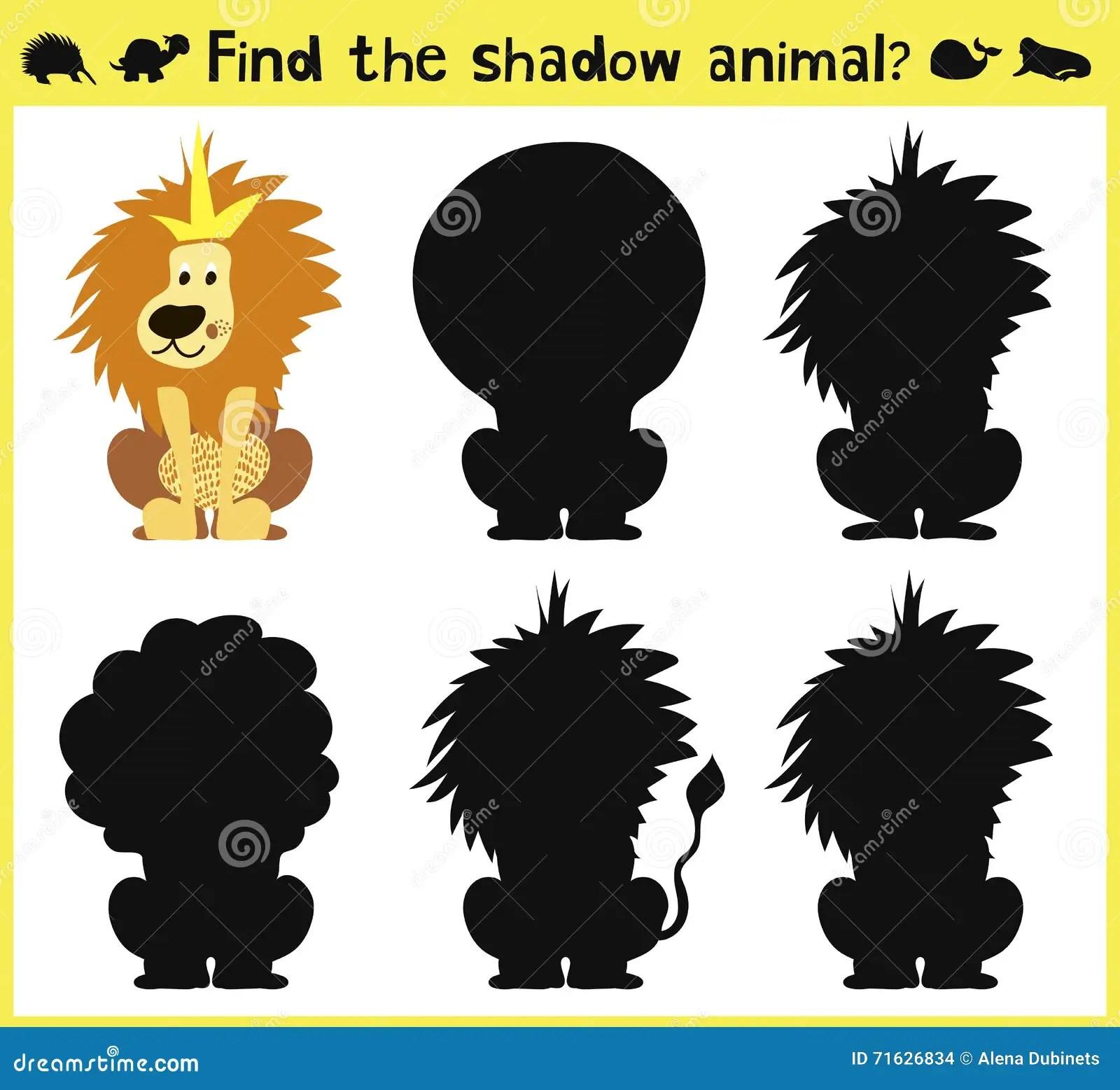 Find The Correct Shadow Lion Cartoon Vector