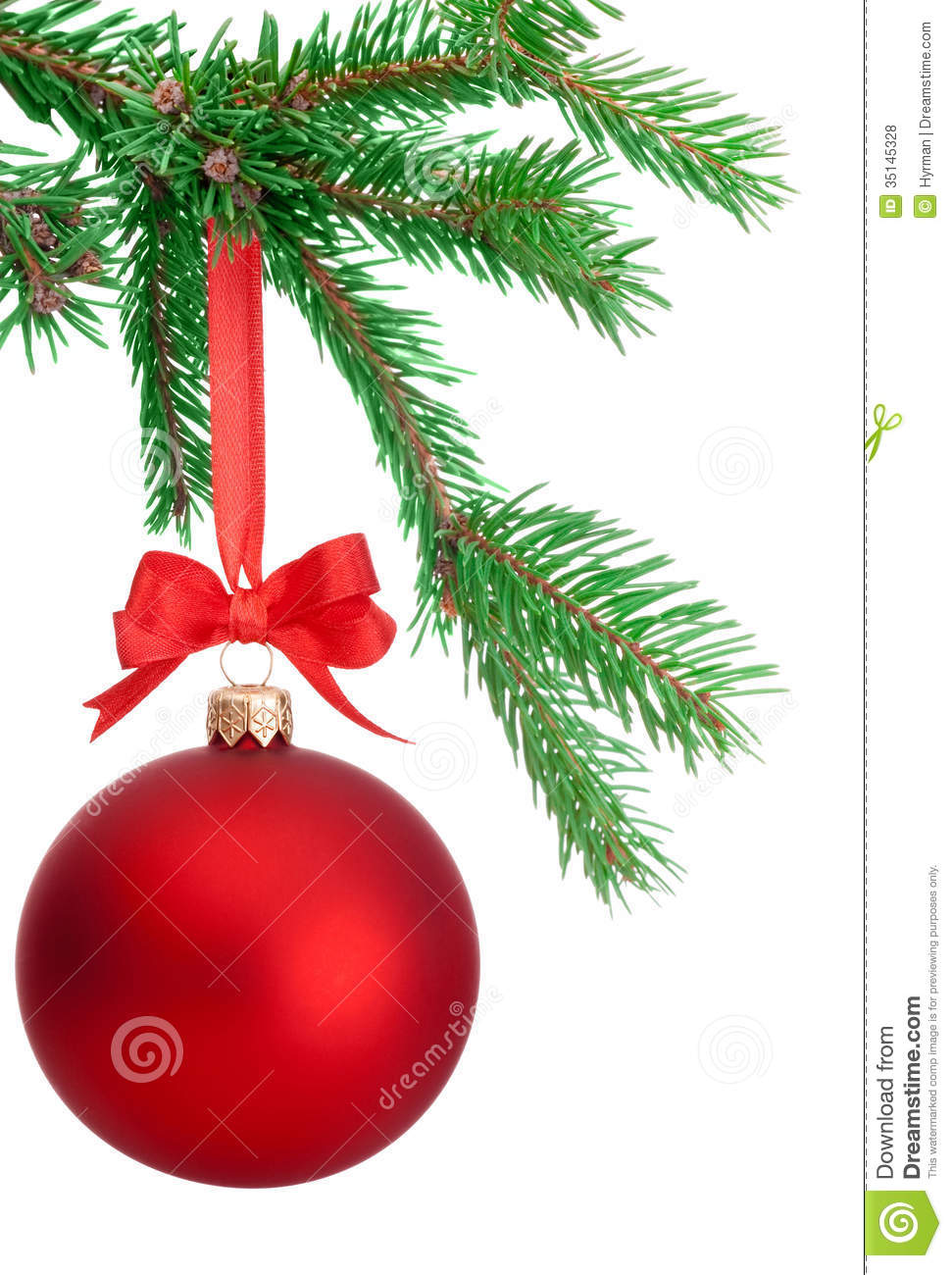 Christmas Ball Hanging On A Fir Tree Branch Isolated On