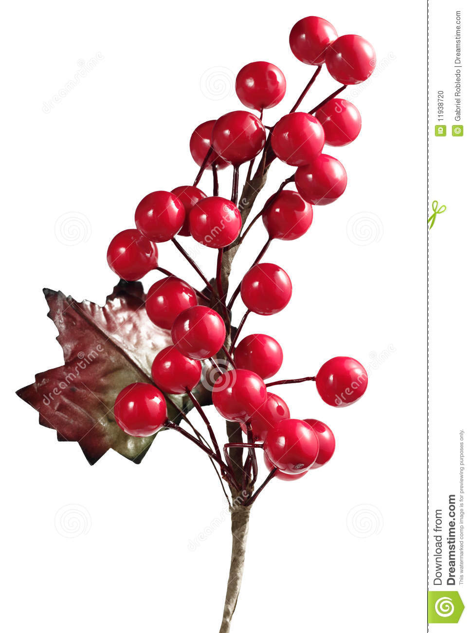 Christmas Cherry Stock Photo Image Of Decorative