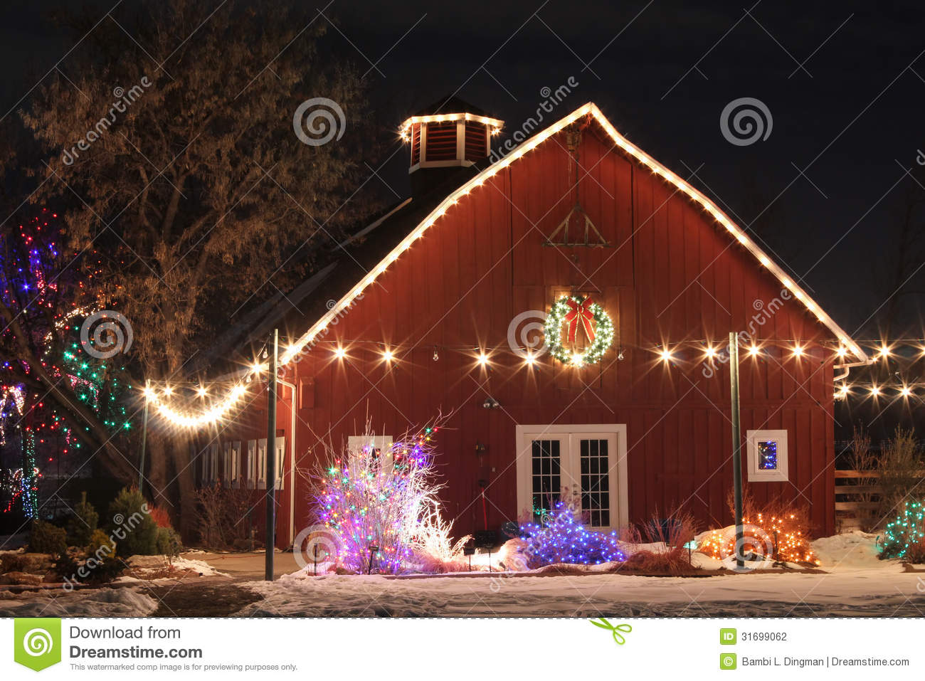 Christmas On The Farm Stock Photography Image 31699062