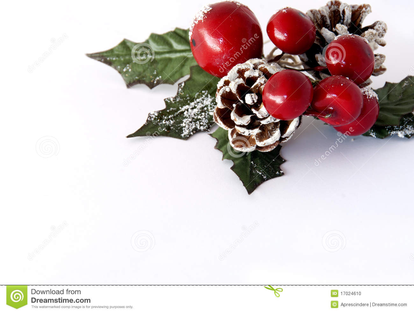 Christmas Greenery Stock Photo Image Of Decor Holiday