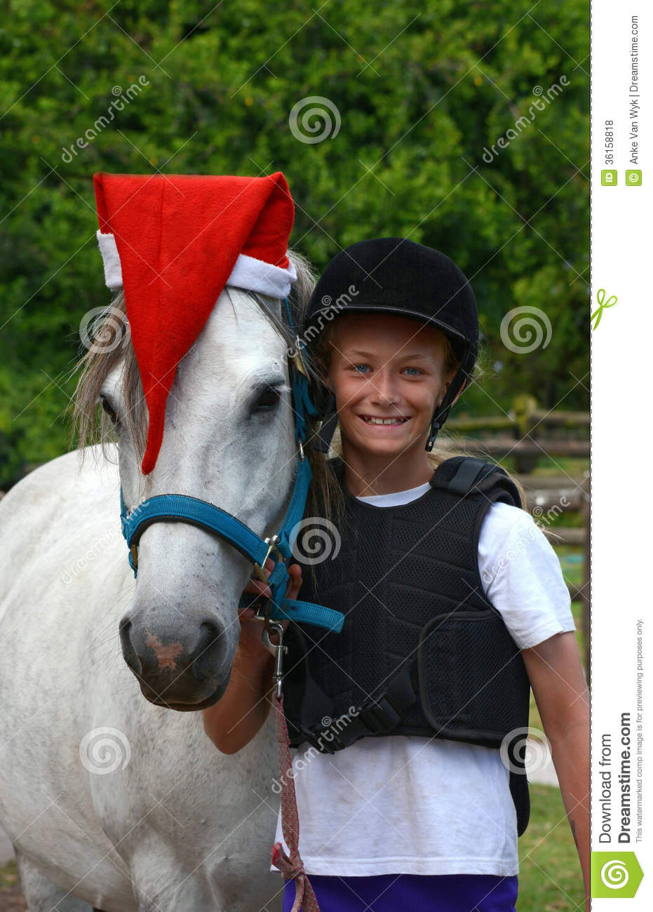 Pictures Horse Funny Smiling