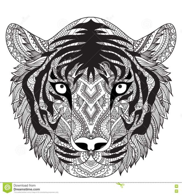 Adult Coloring Tiger Stock Illustrations – 27 Adult Coloring