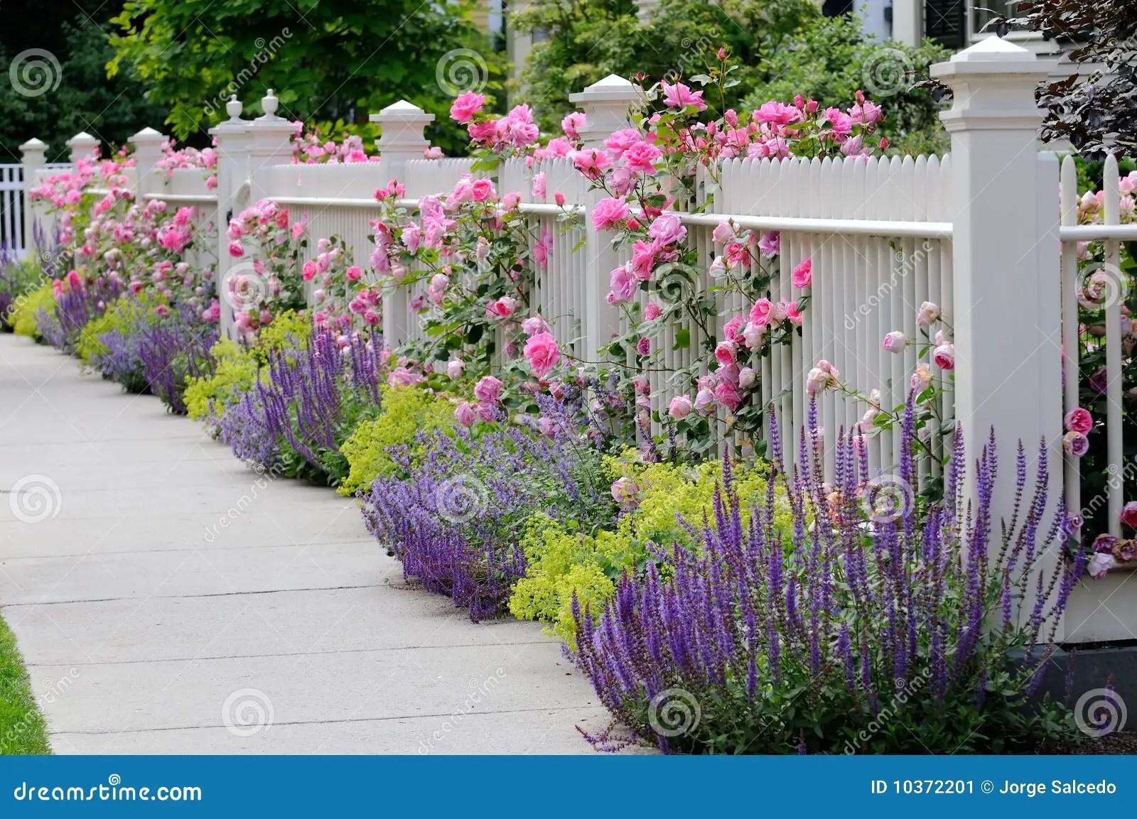 White Trellis Fence