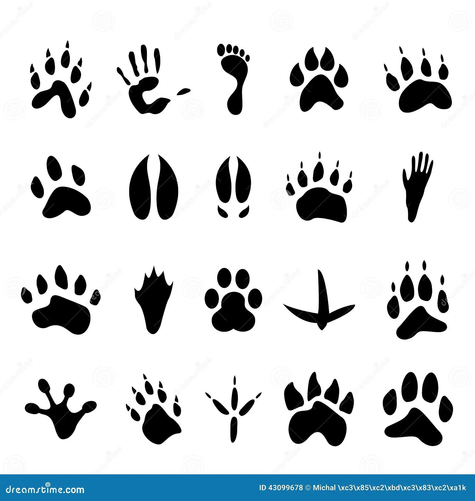 Colecao De 20 Animais E De Pegadas Humanas Ilustracao Do