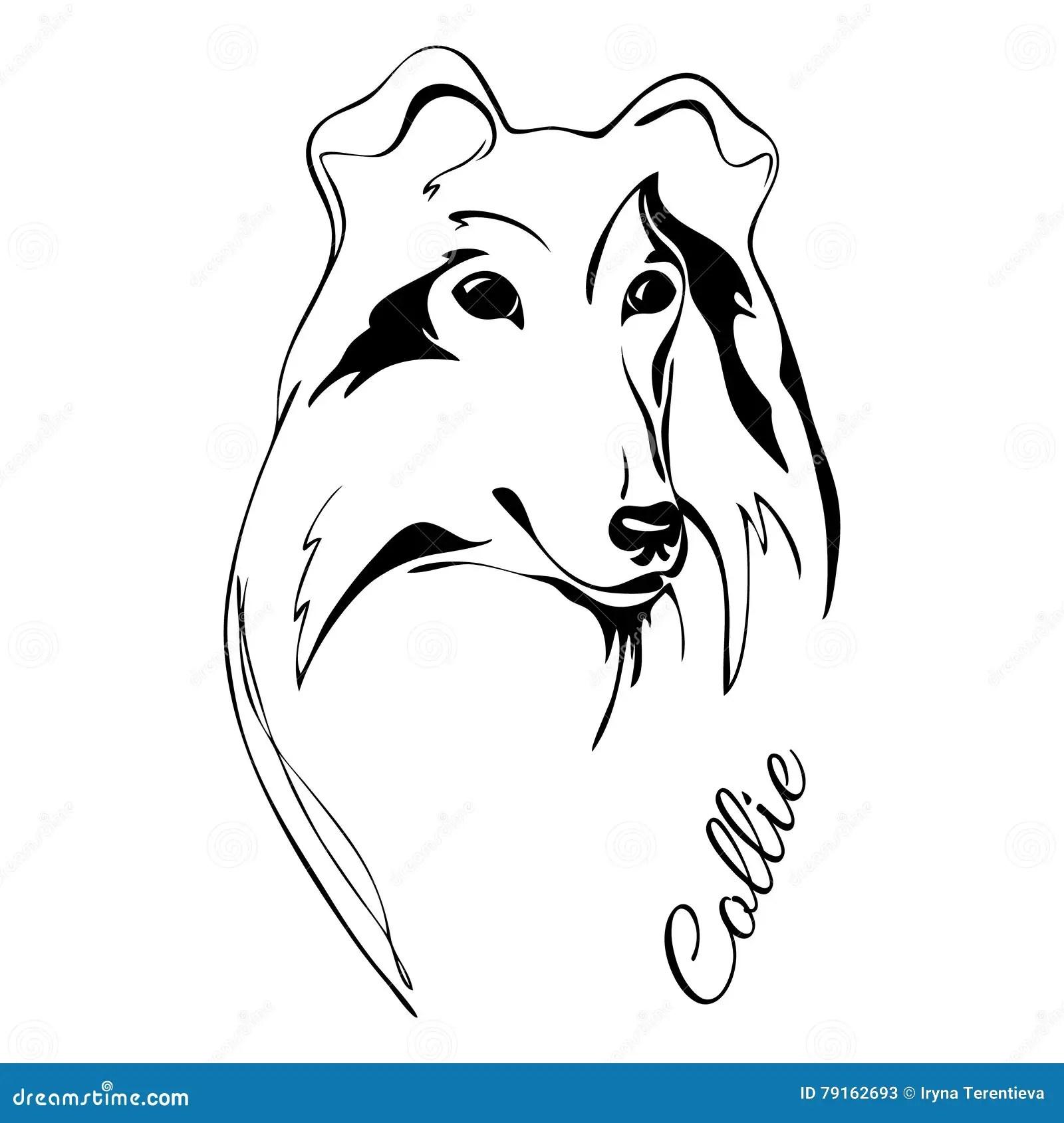 Collie Dog Vector Black Silhouette Vector Illustration