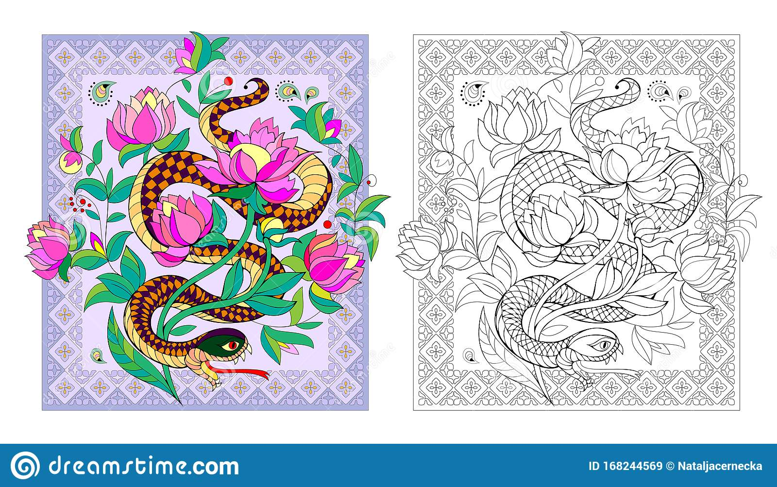 Colorful And Black And White Page For Coloring Book