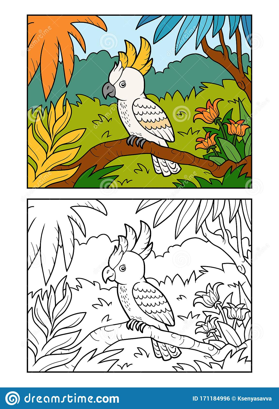 Coloring Book Cockatoo Parrot In The Rainforest Stock