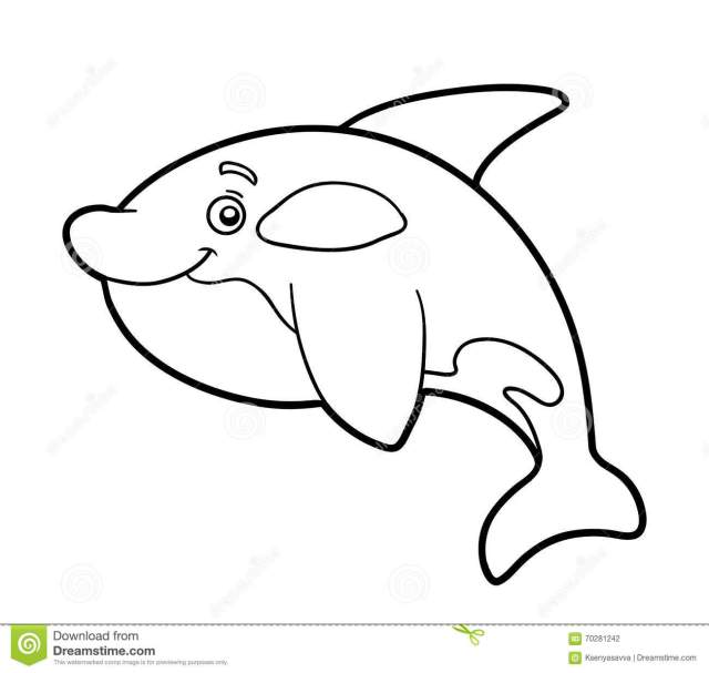 Coloring Book, Coloring Page (killer Whale) Stock Vector