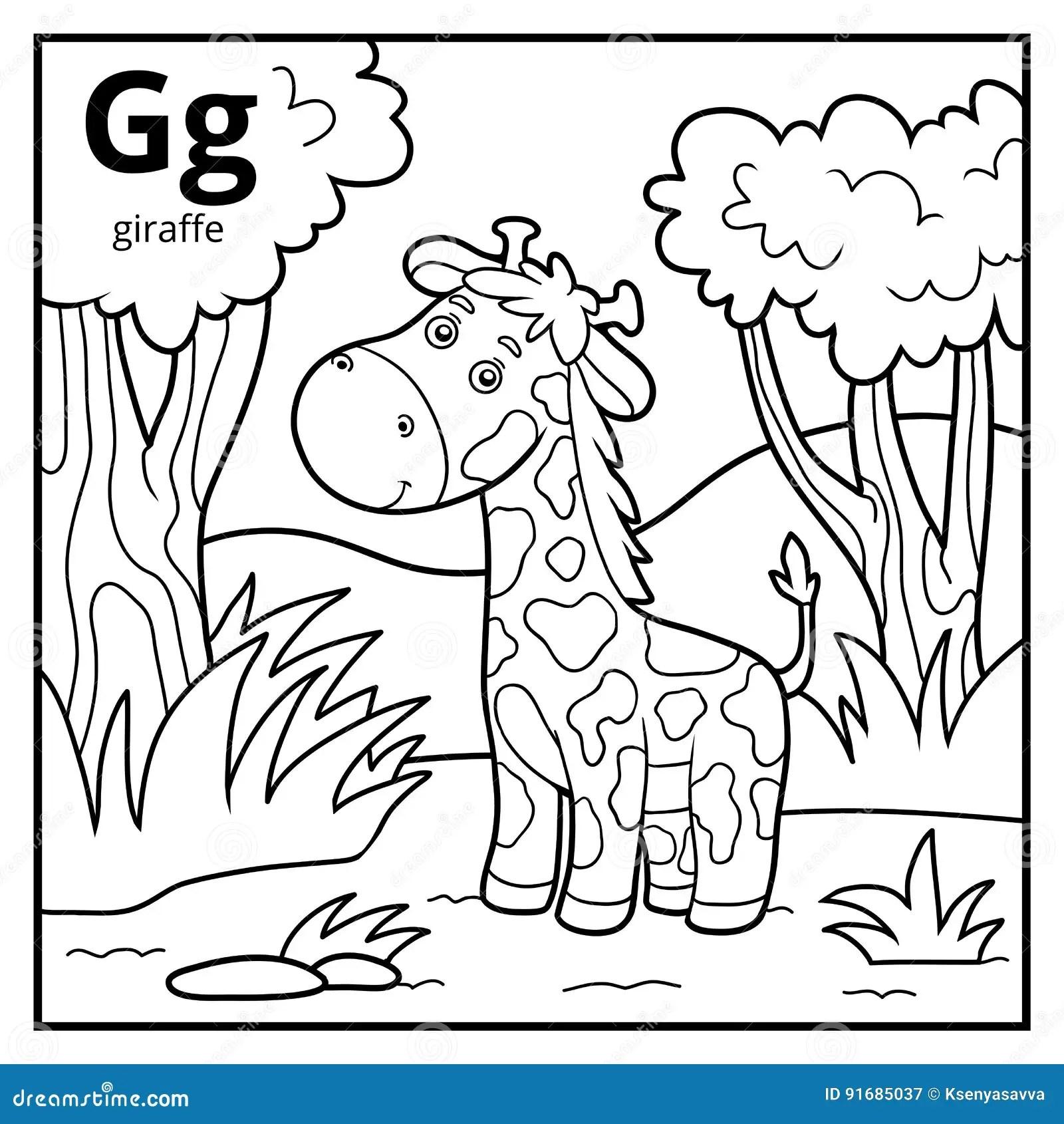 Coloring Book Colorless Alphabet Letter G Giraffe Stock
