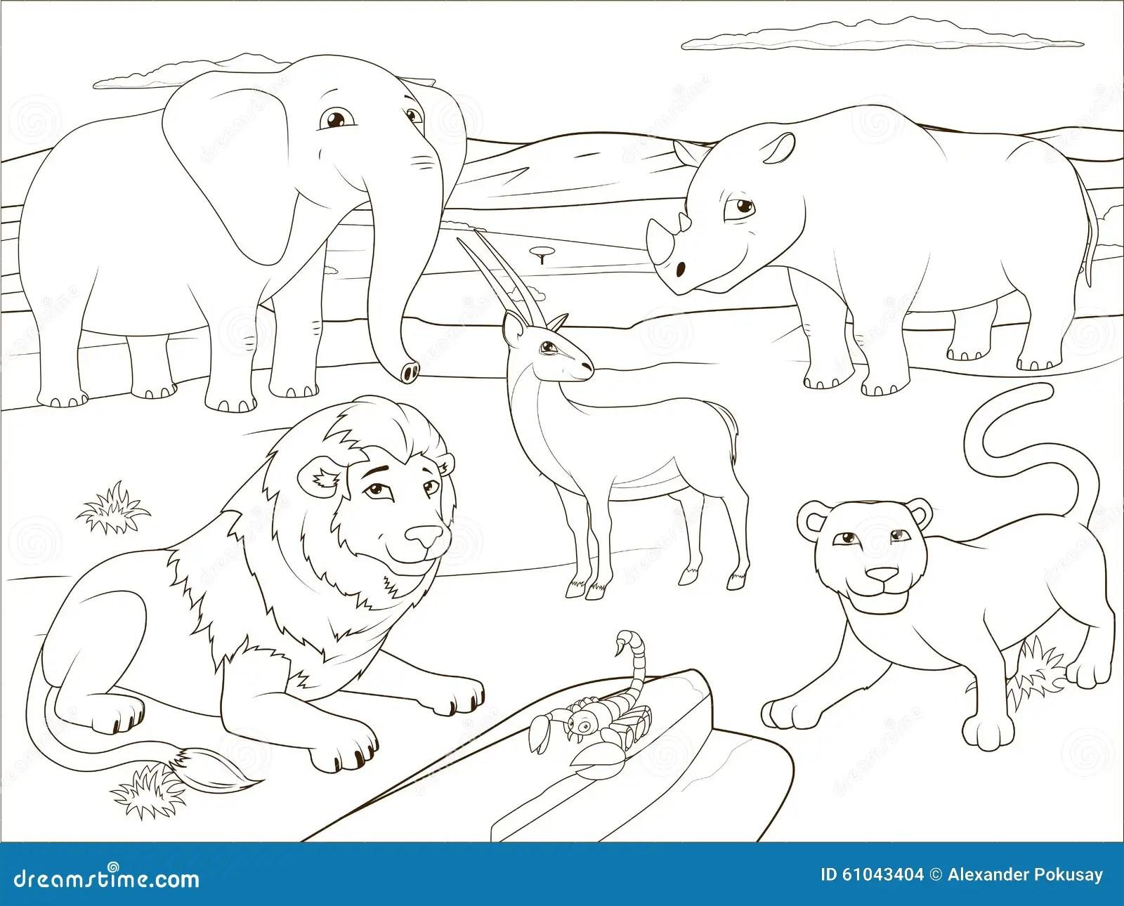 Baby Lion Cartoon Drawing