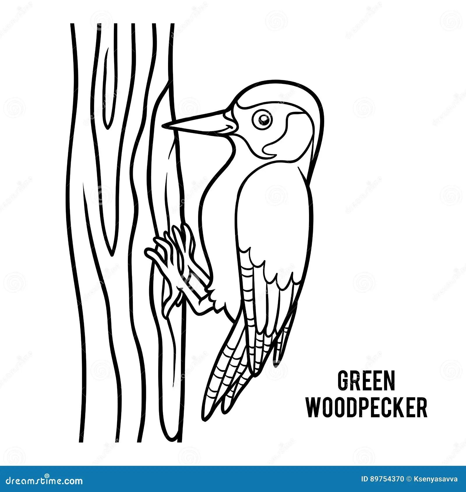Coloring Book Green Woodpecker Stock Vector