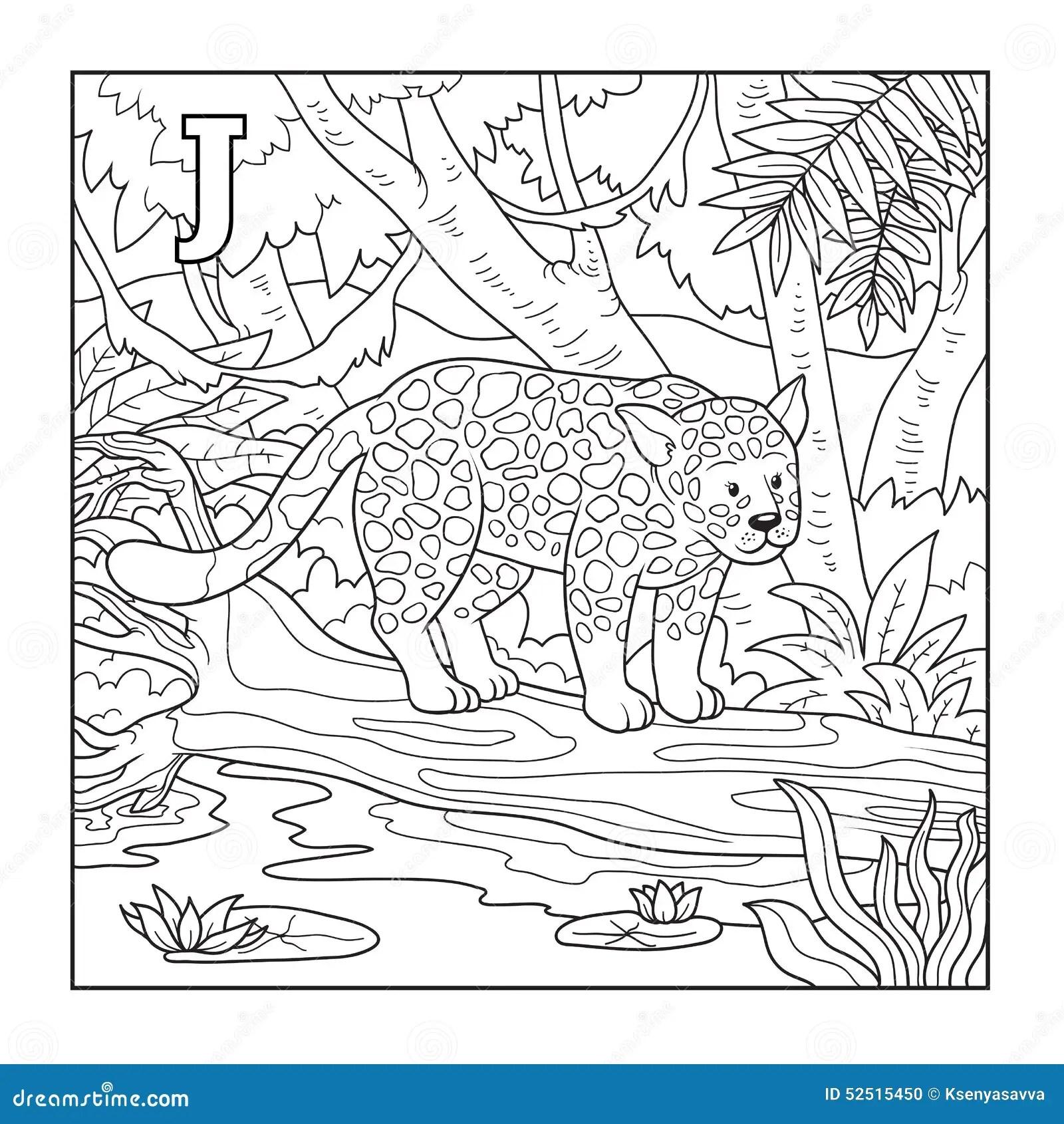 Coloring Book Jaguar Illustration Letter J Stock