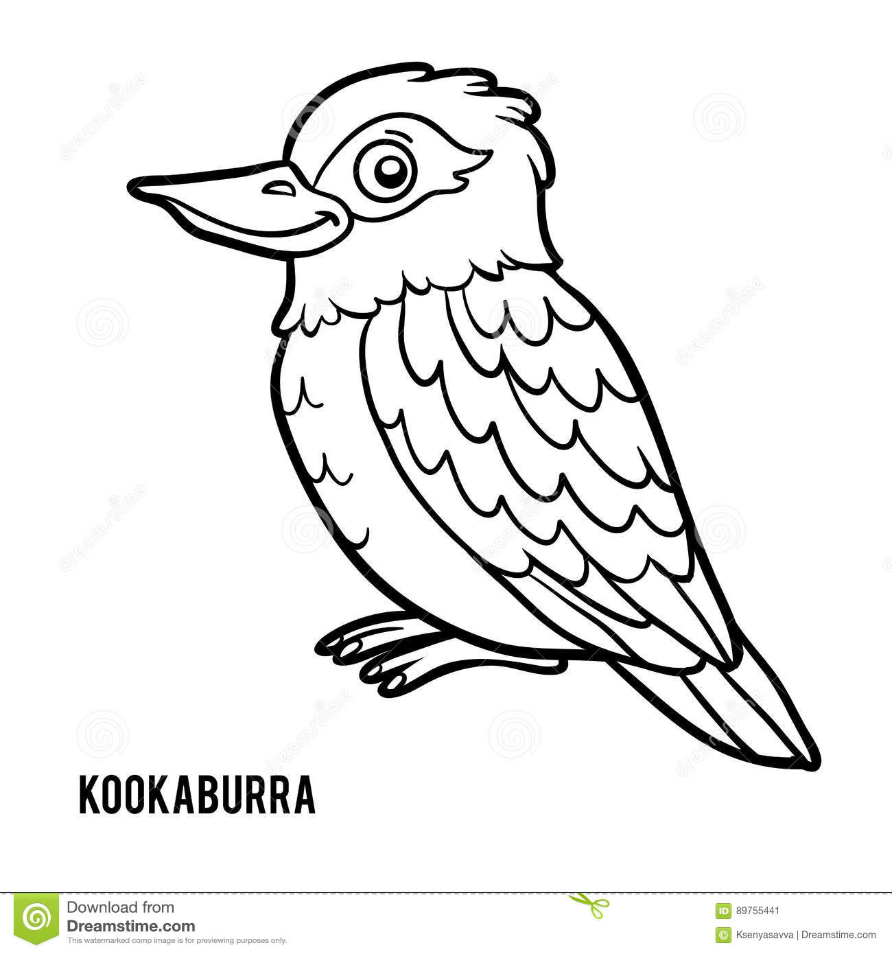 Coloring Book Kookaburra Stock Vector Illustration Of