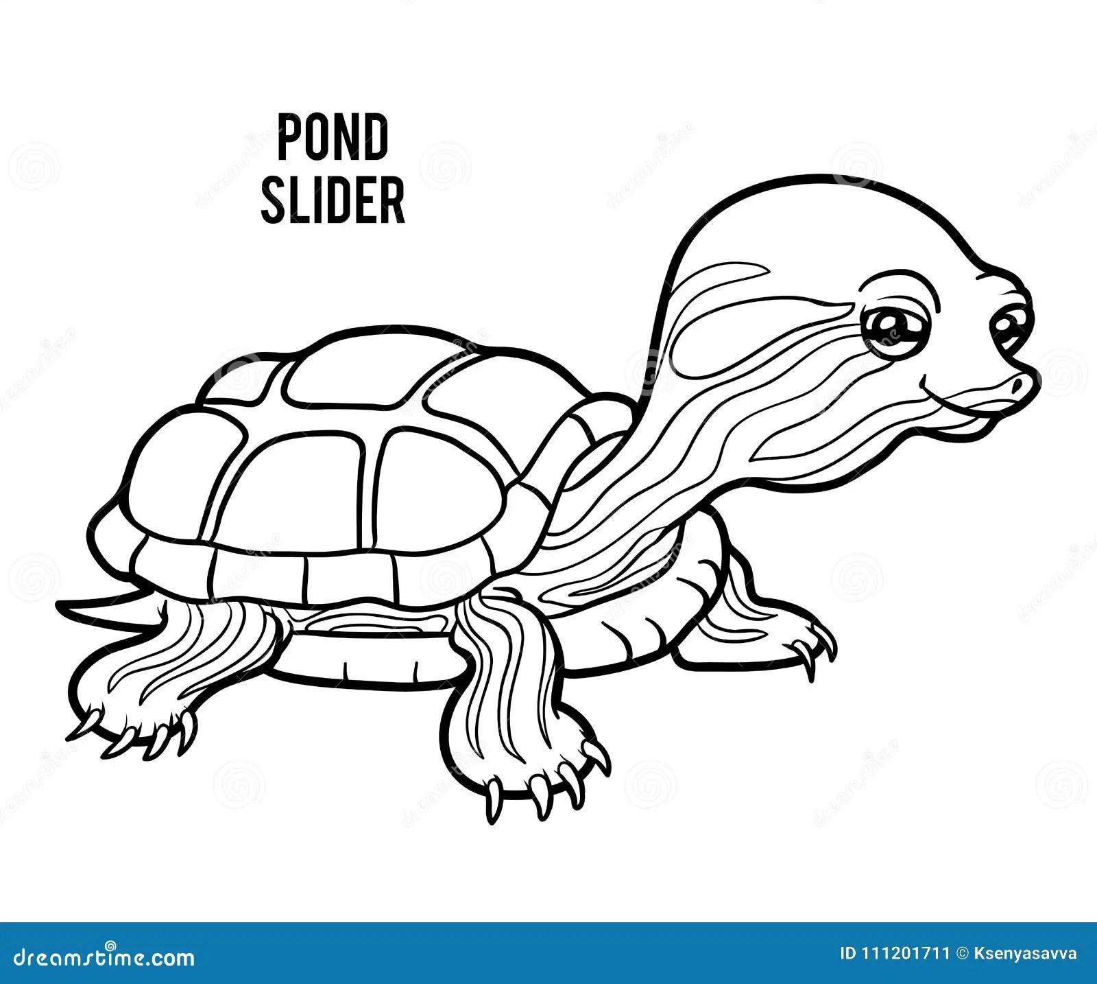 Coloring Book Pond Slider Stock Vector Illustration Of
