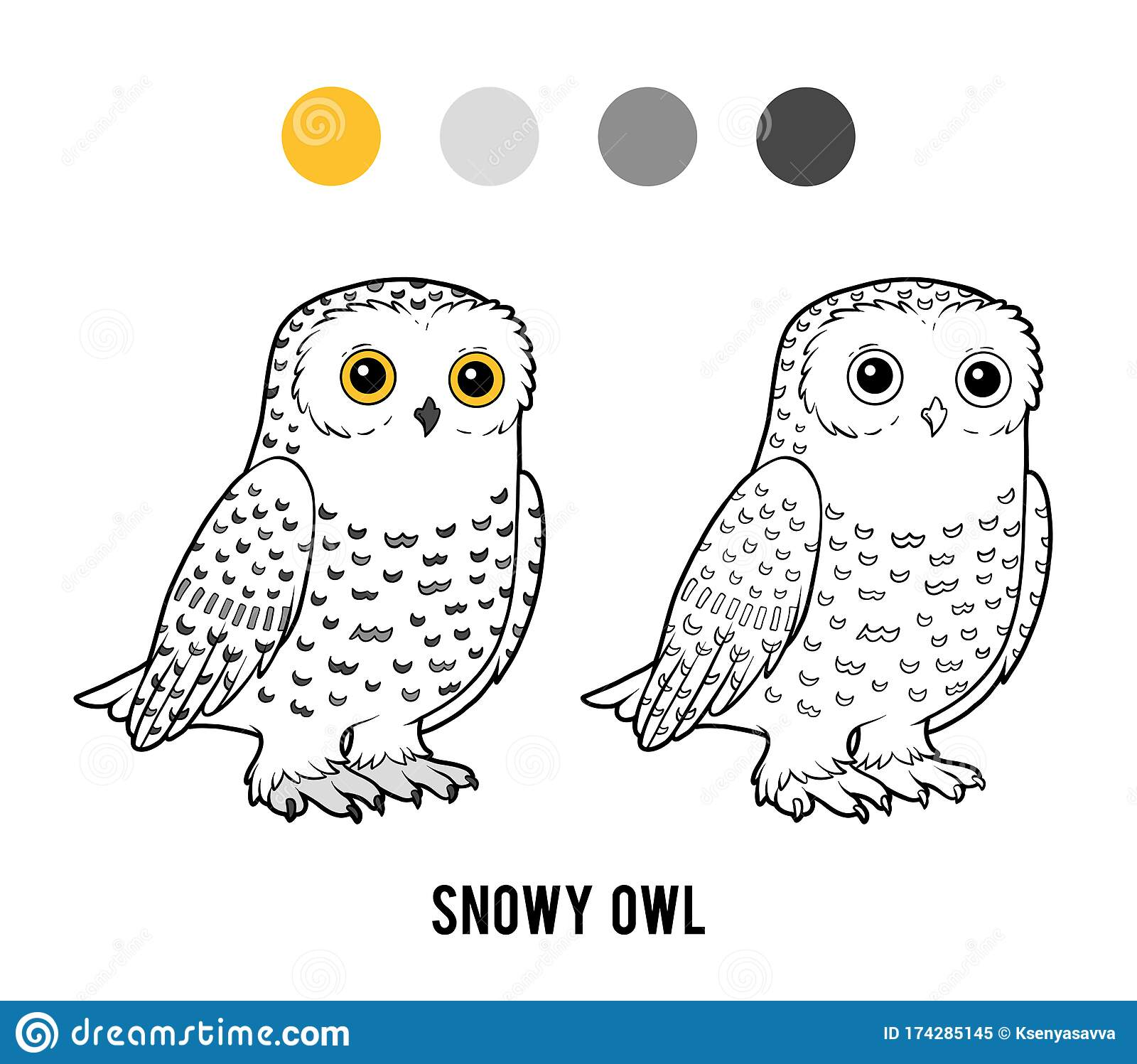 Coloring Book Snowy Owl Stock Vector Illustration Of