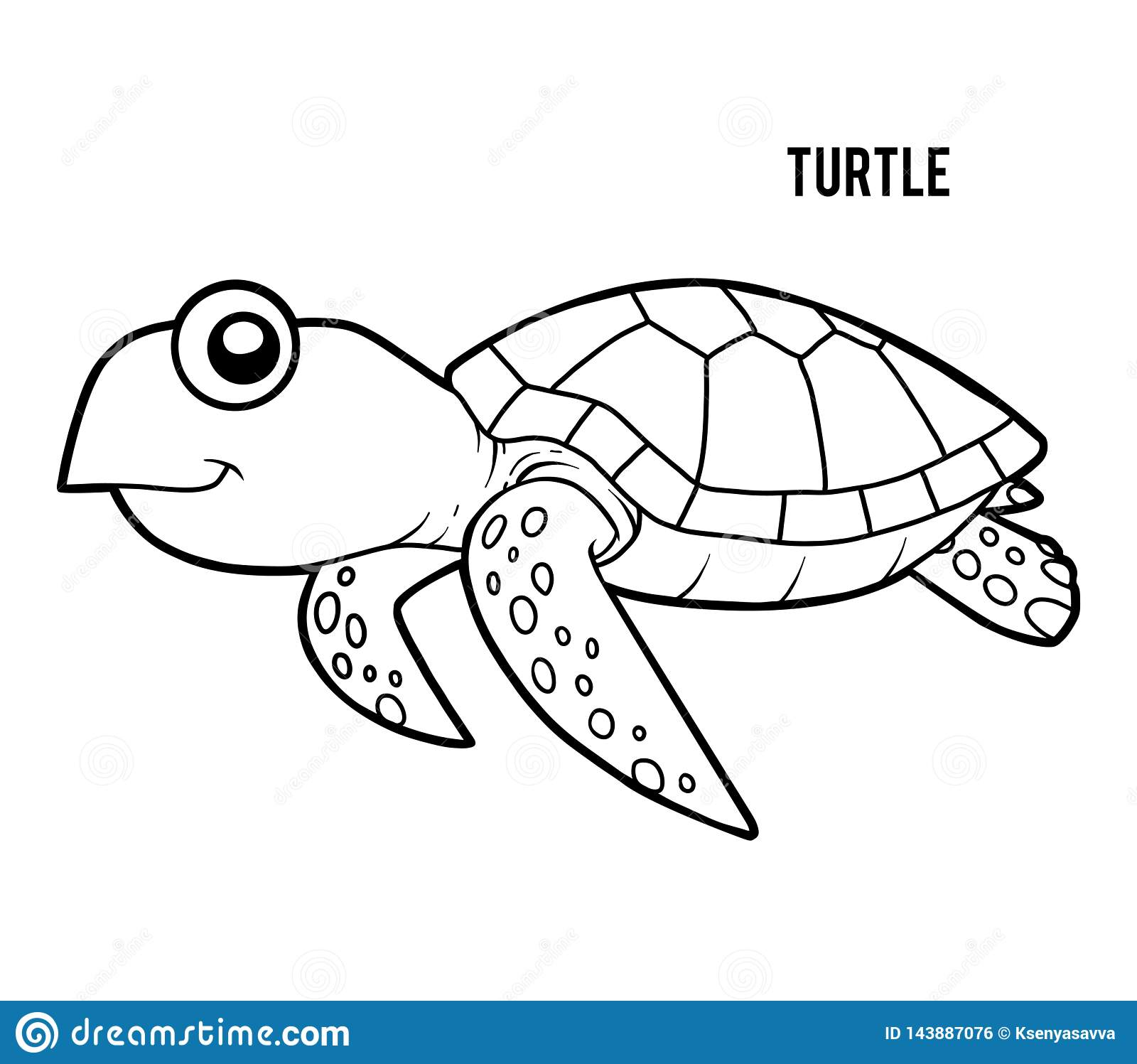 Coloring Book Turtle Stock Vector Illustration Of Nature