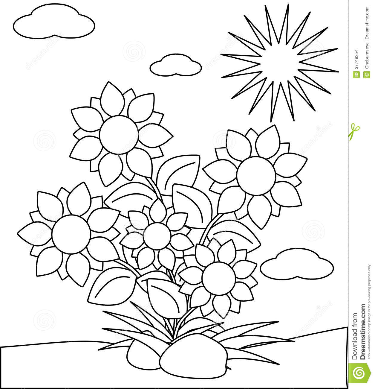 Coloring Flowers Isolated With Sun Stock Images