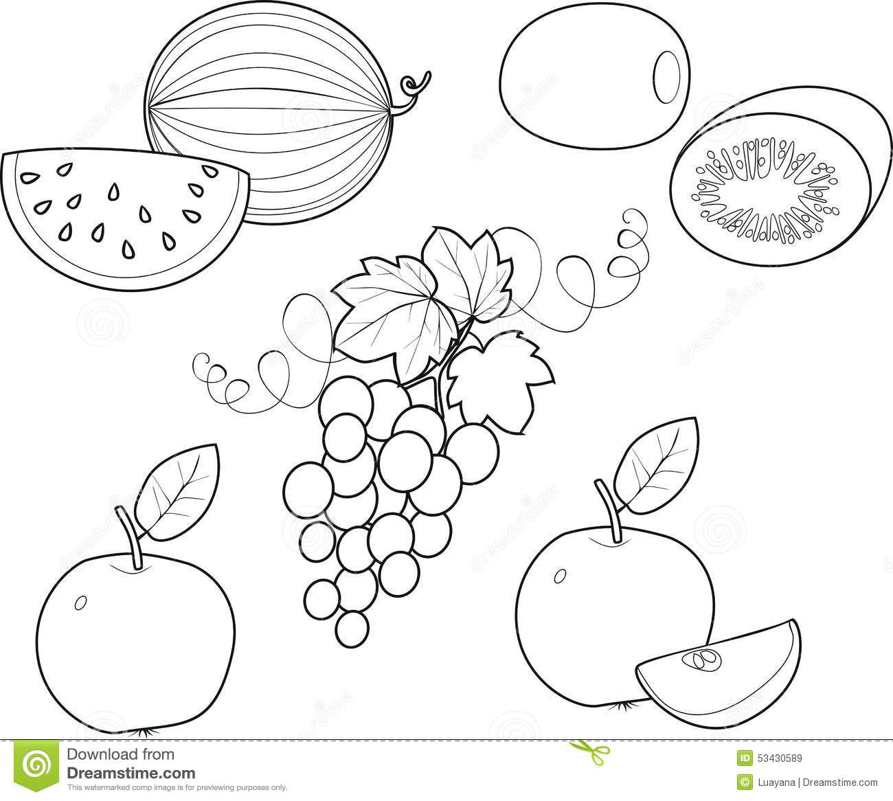 Coloring Fruit Stock Vector