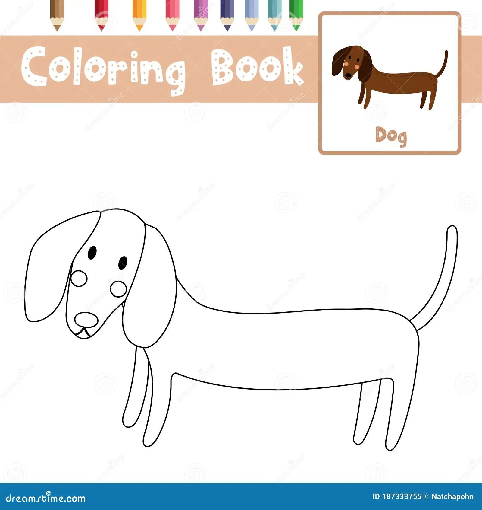 Coloring Page Dachshund Animal Cartoon Character Vector