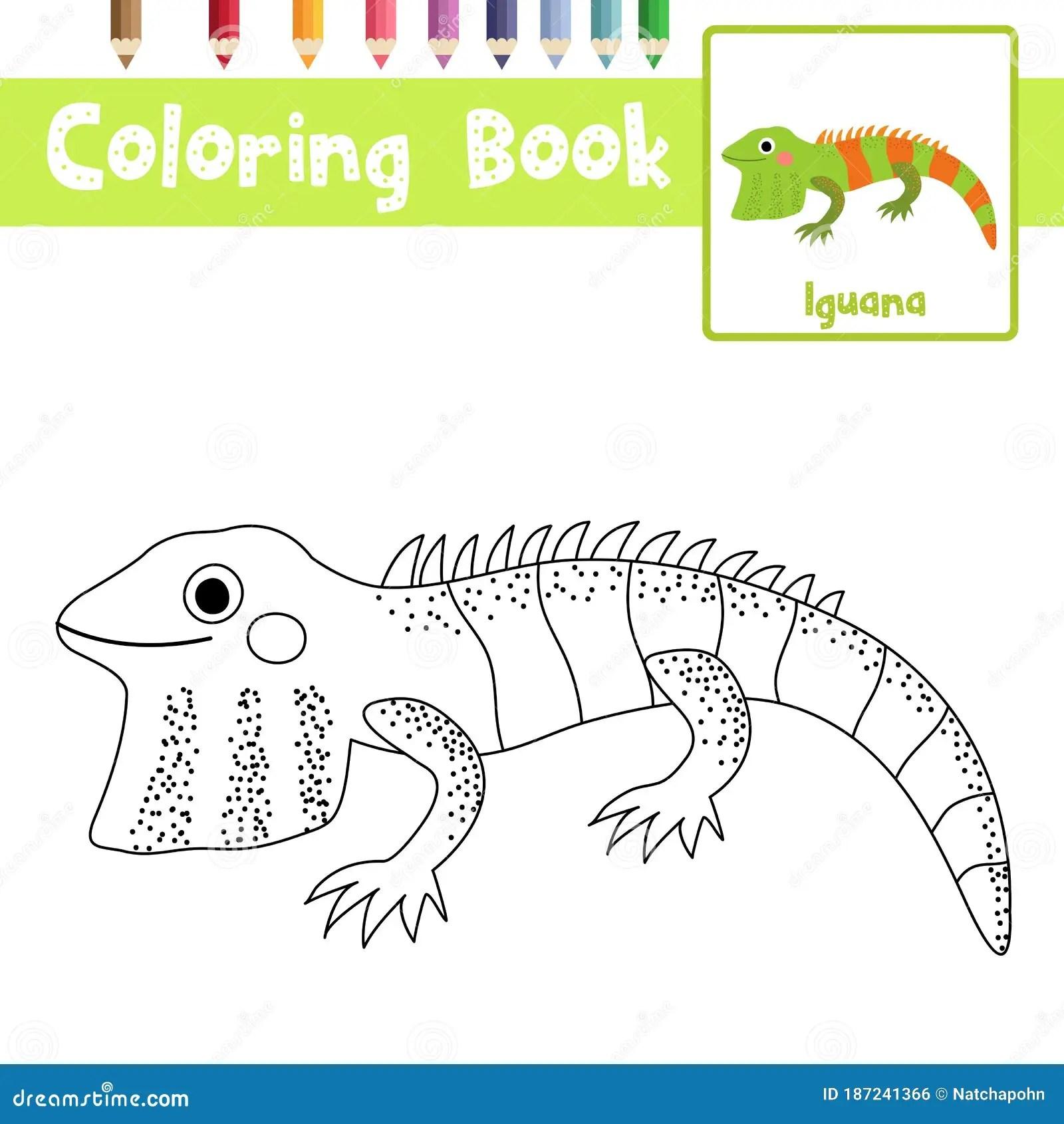 Coloring Page Iguana Animal Cartoon Character Vector