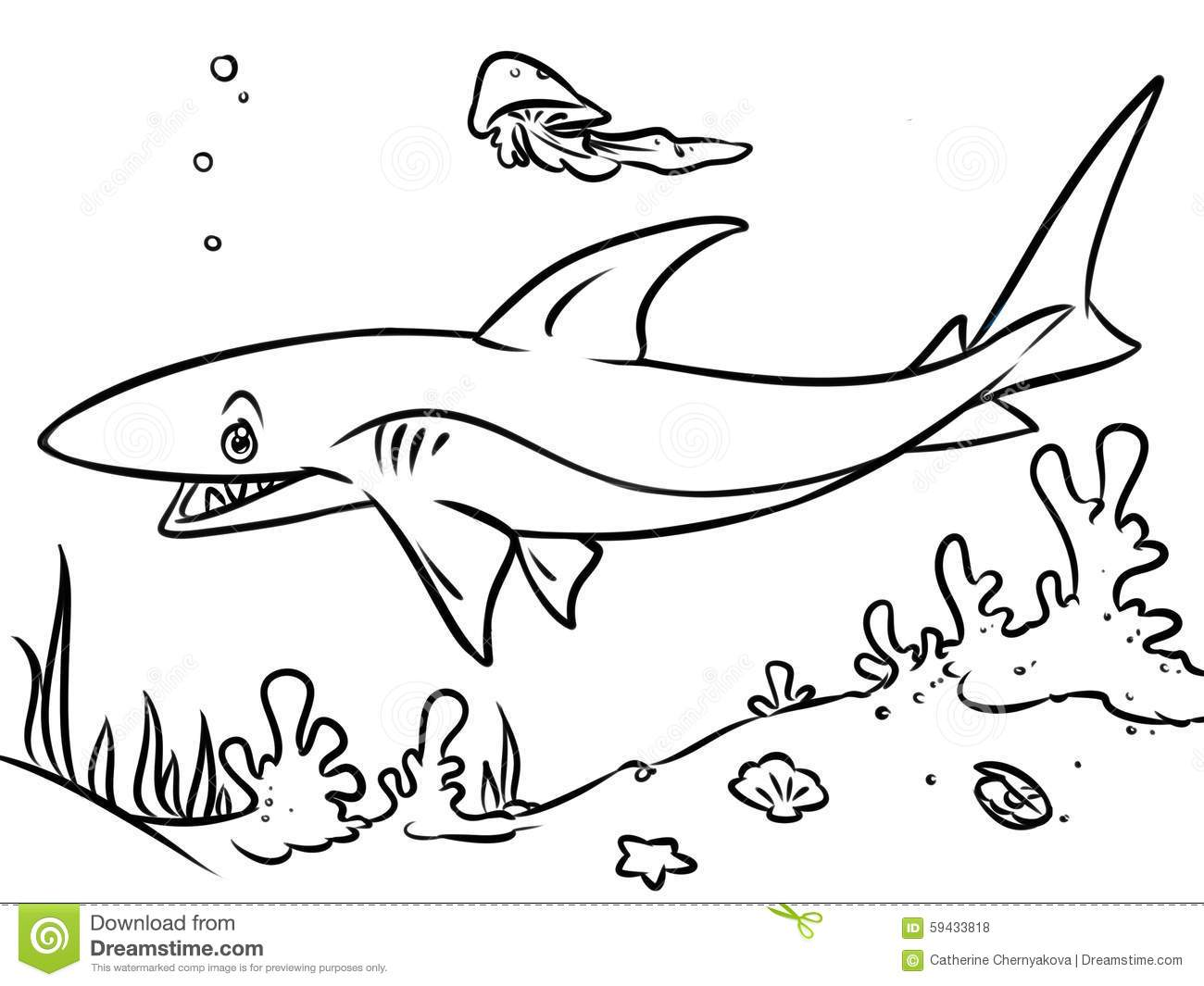 Coloring Page Ocean Shark Contour Illustration Stock