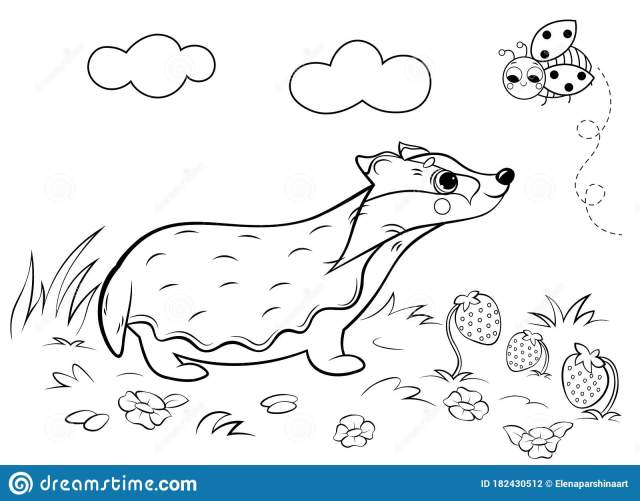 Coloring Page Outline Of Cute Cartoon Badger. Vector Image With