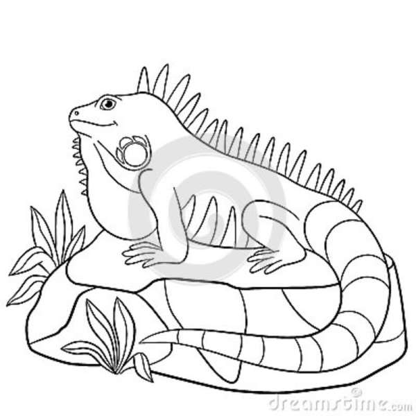 rock coloring pages # 34