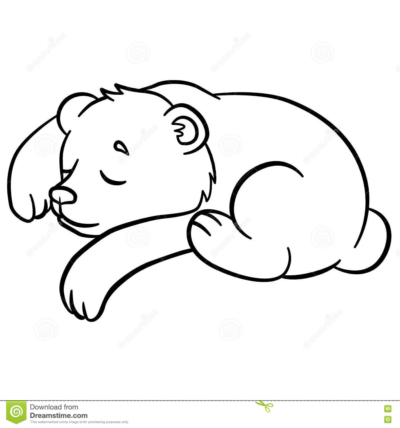 Coloring Pages Wild Animals Little Cute Baby Bear Sleeps Stock Vector