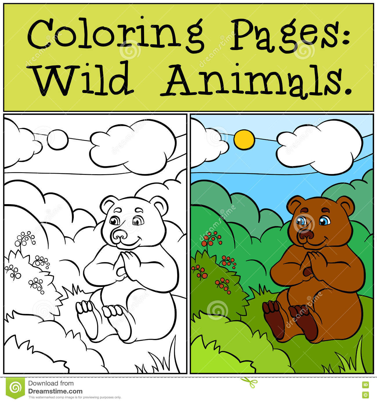 Coloring Pages Wild Animals Little Cute Bear Stock