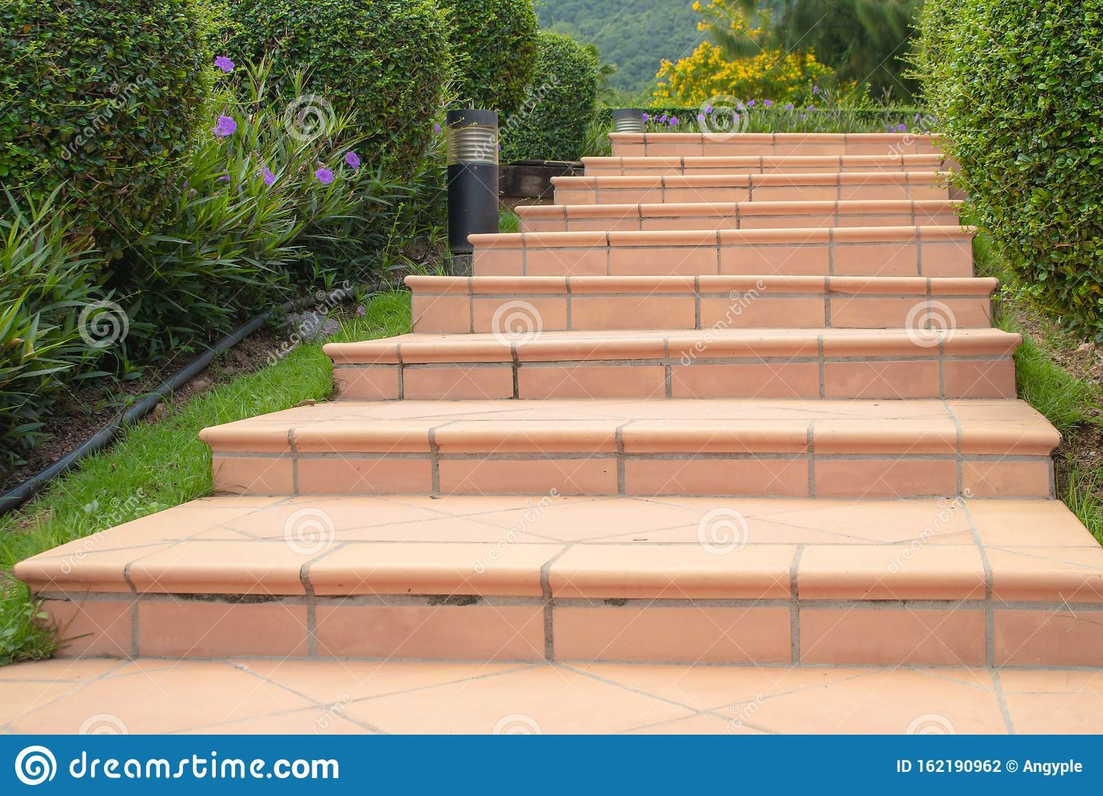 Concrete Stairs Or Pathway Flanked With Green Trees In Garden | Concrete Stairs Design Outdoor | Beautiful | Roof Deck | Storage Underneath | Exterior | Modern