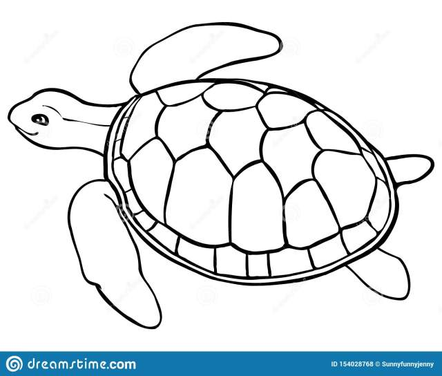 Contour Turtle - Coloring Page For Kids Stock Vector