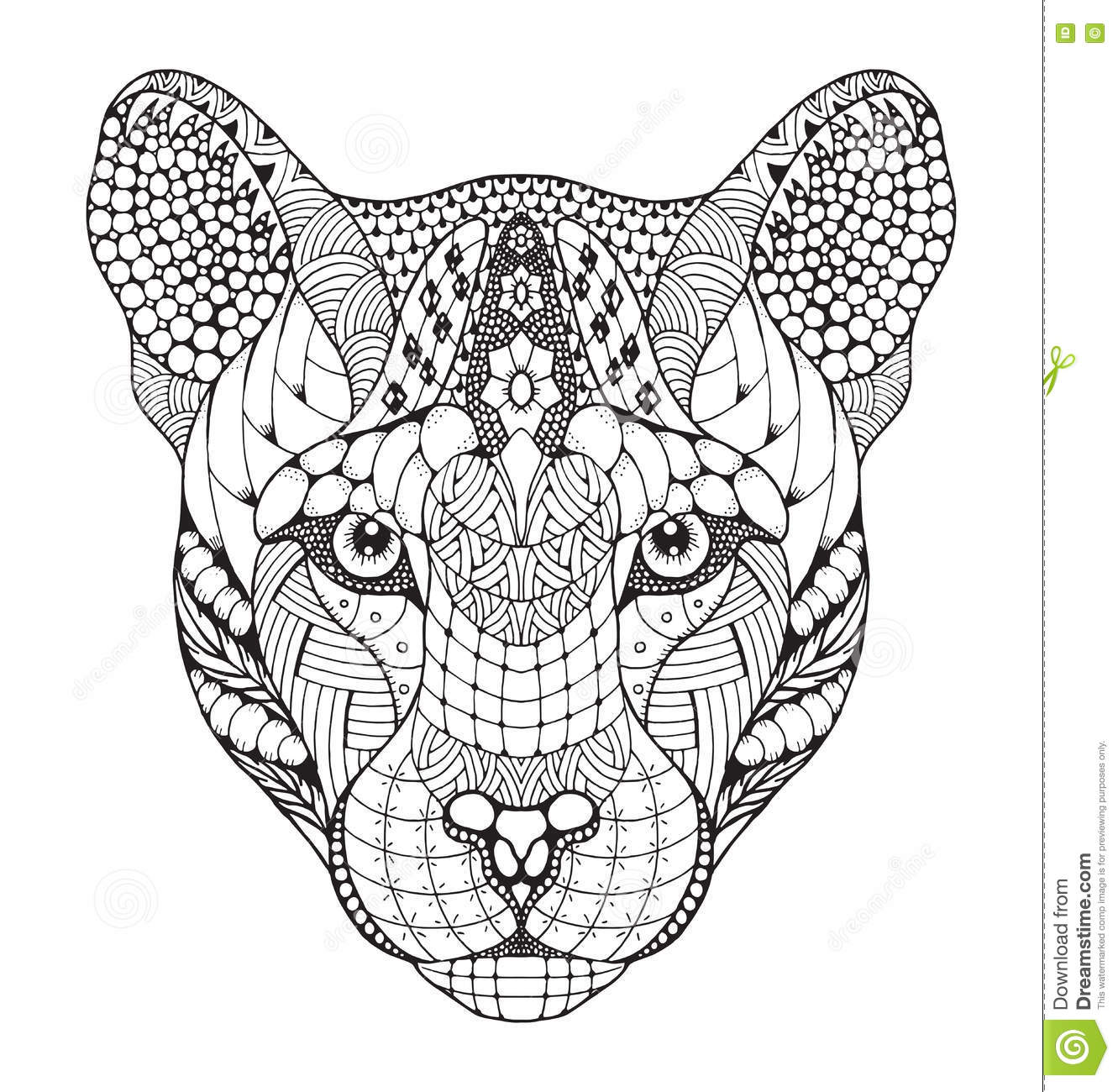 Cougar Head Vector Illustration