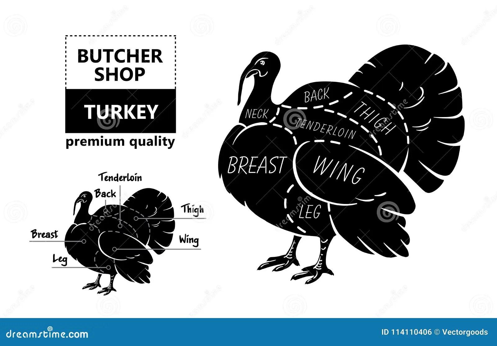 coupes de viande diagramme de boucher d