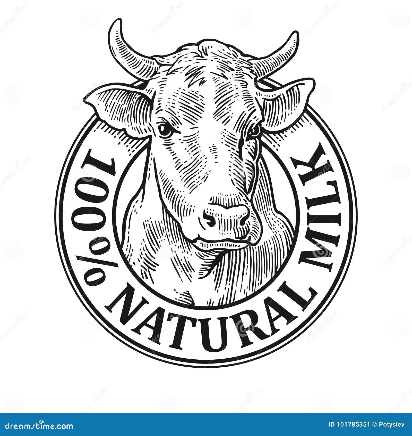 Cows Head 100 Natural Milk Vintage Vector Engraving