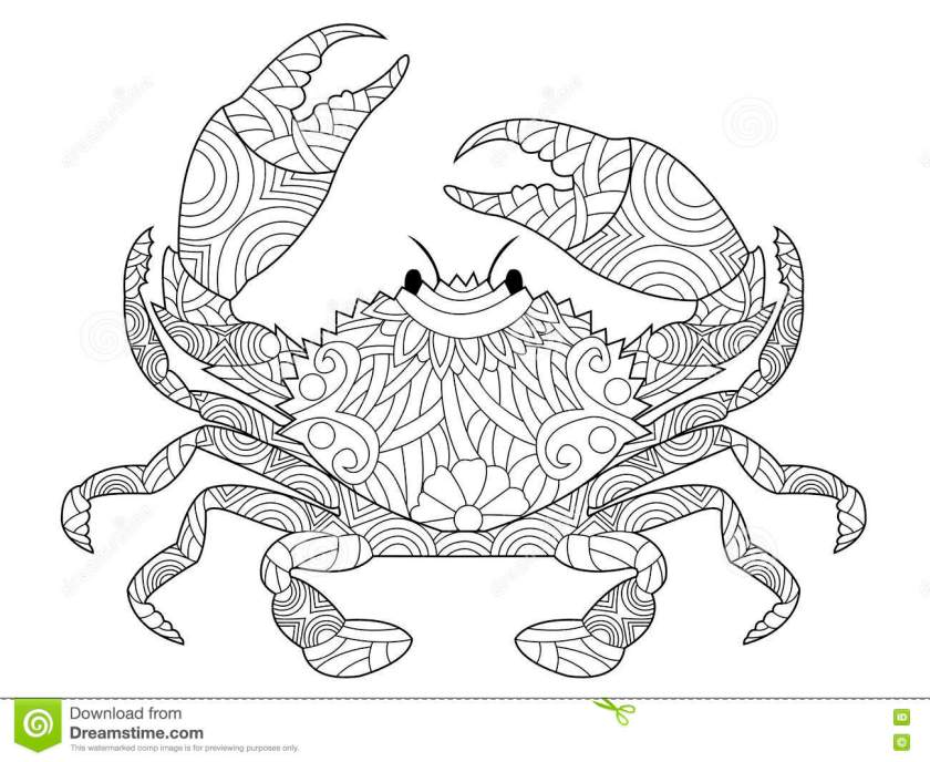 crab coloring book vector for adults stock vector