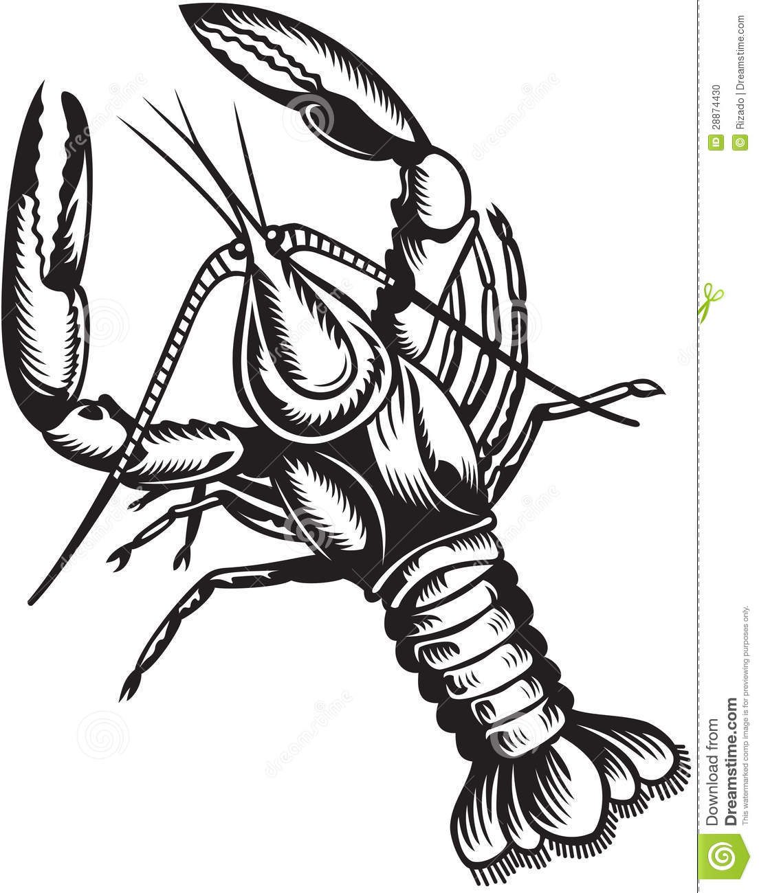 Crayfish Black And White Style Stock Vector