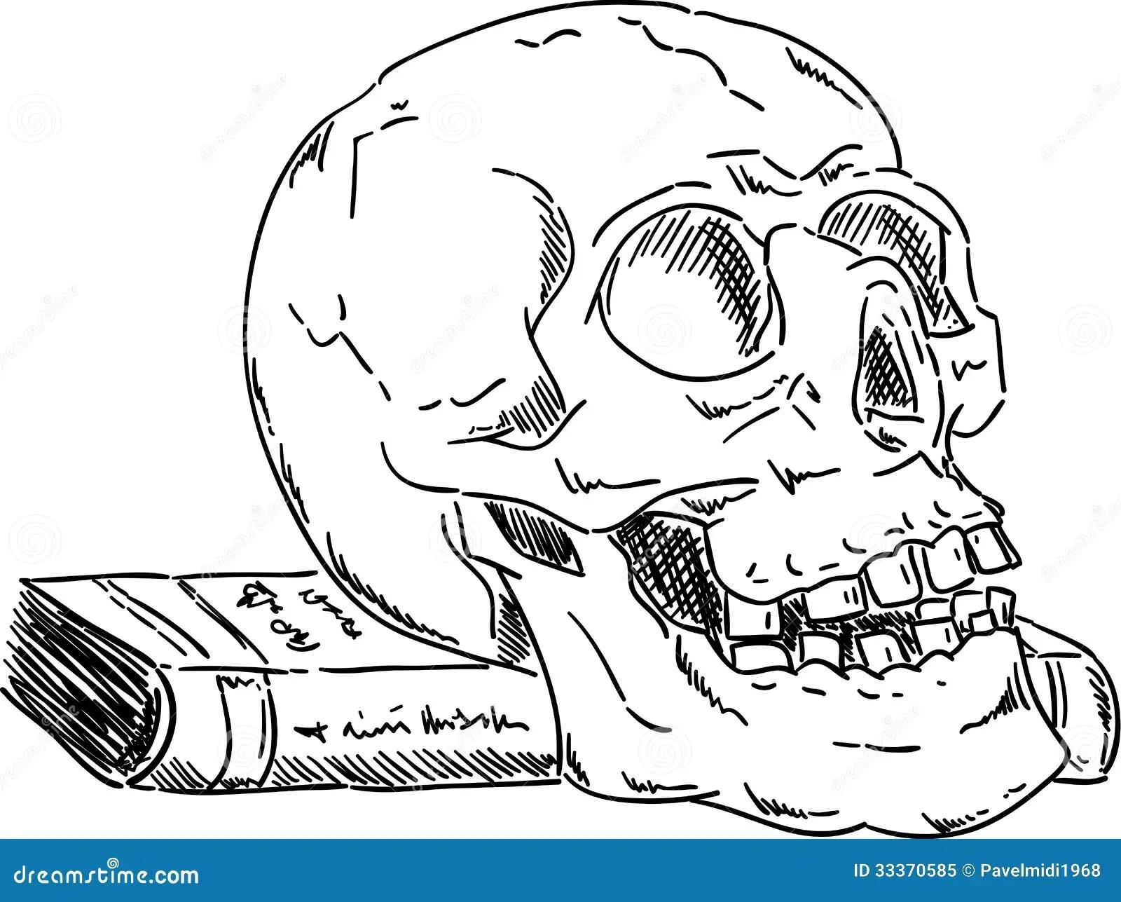 Cranio De Dia Das Bruxas Foto De Stock Royalty Free