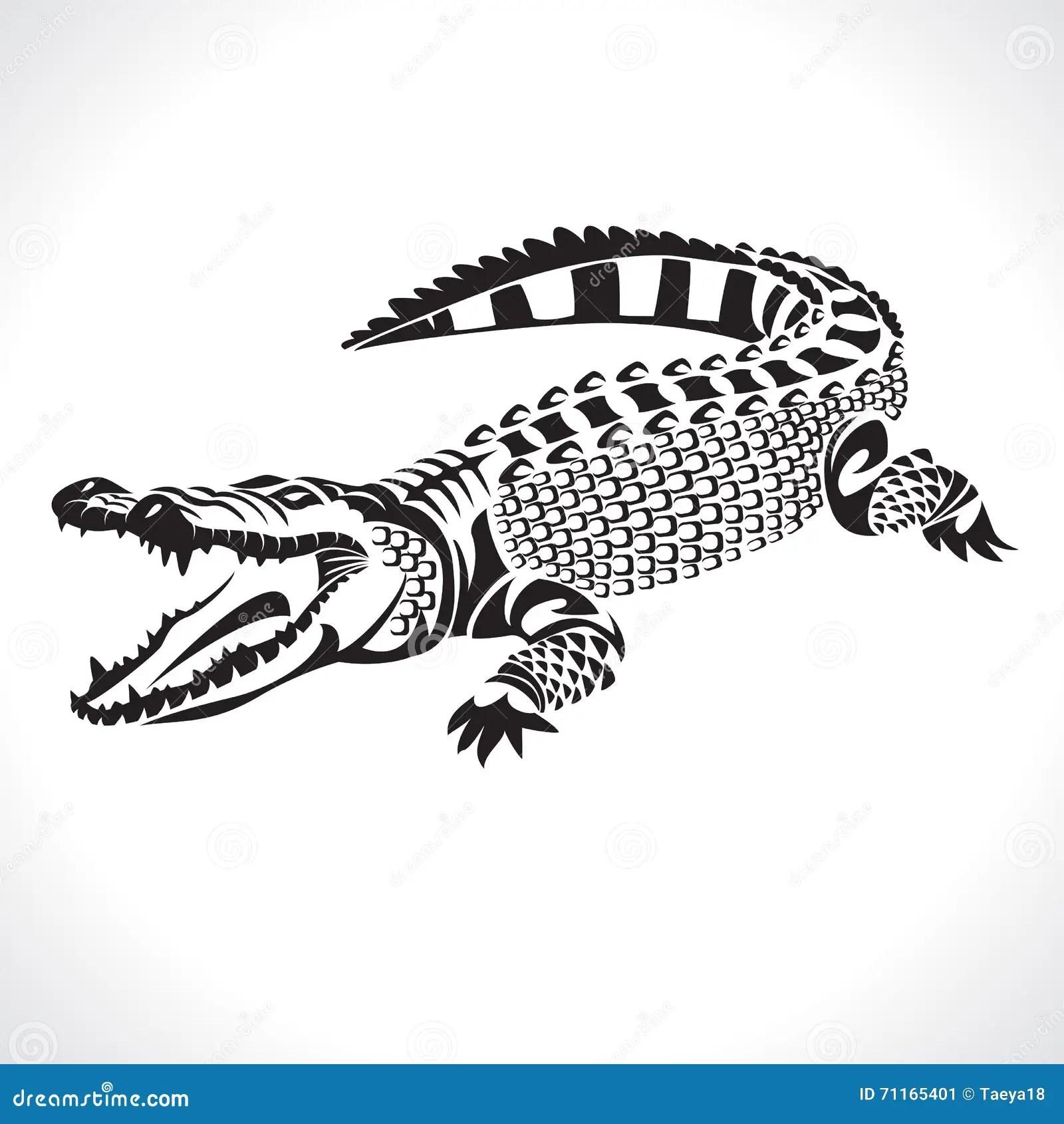 Crocodile Stock Vector