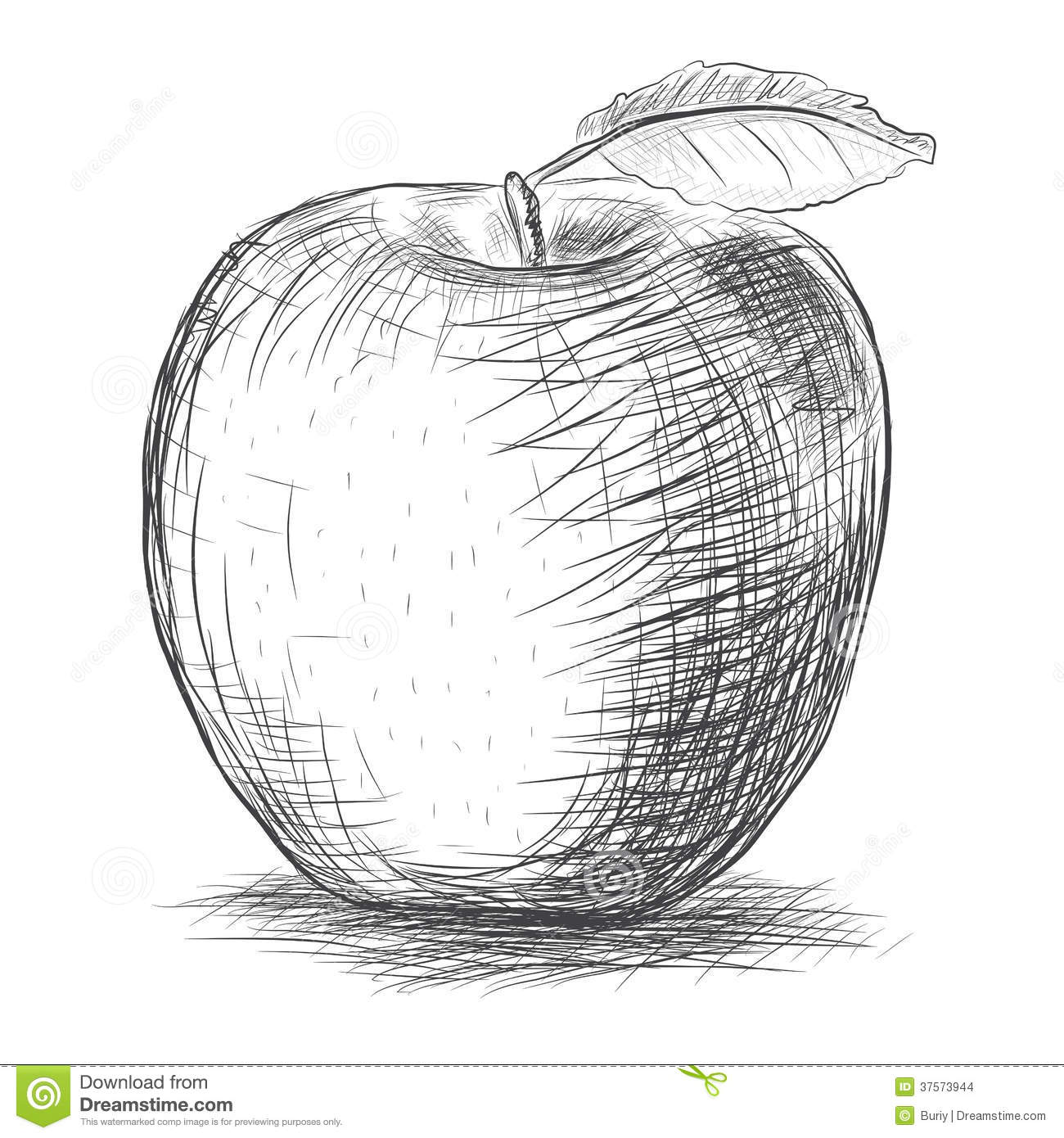 Croquis Pomme Illustration De Vecteur Illustration Du