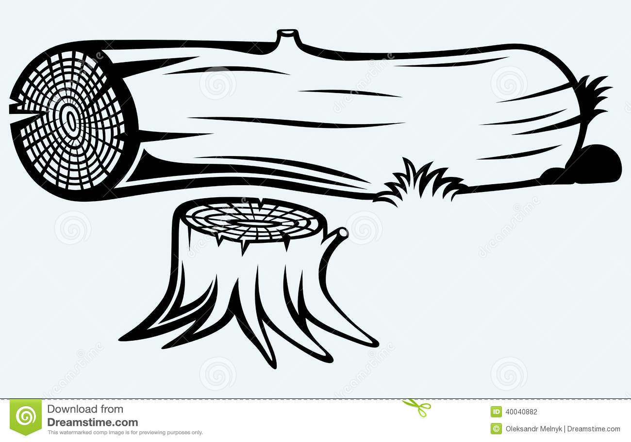 Cross Section Of Tree Stump Stock Vector