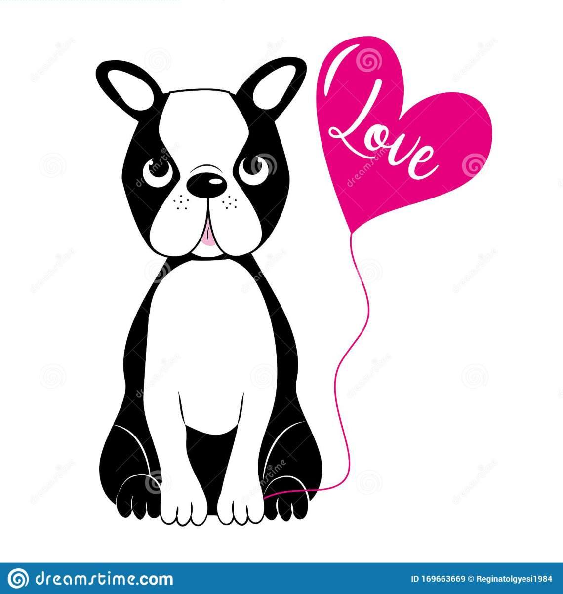 Download Cute Boston Terrier, And Pink Ballon With Love Text. Stock ...