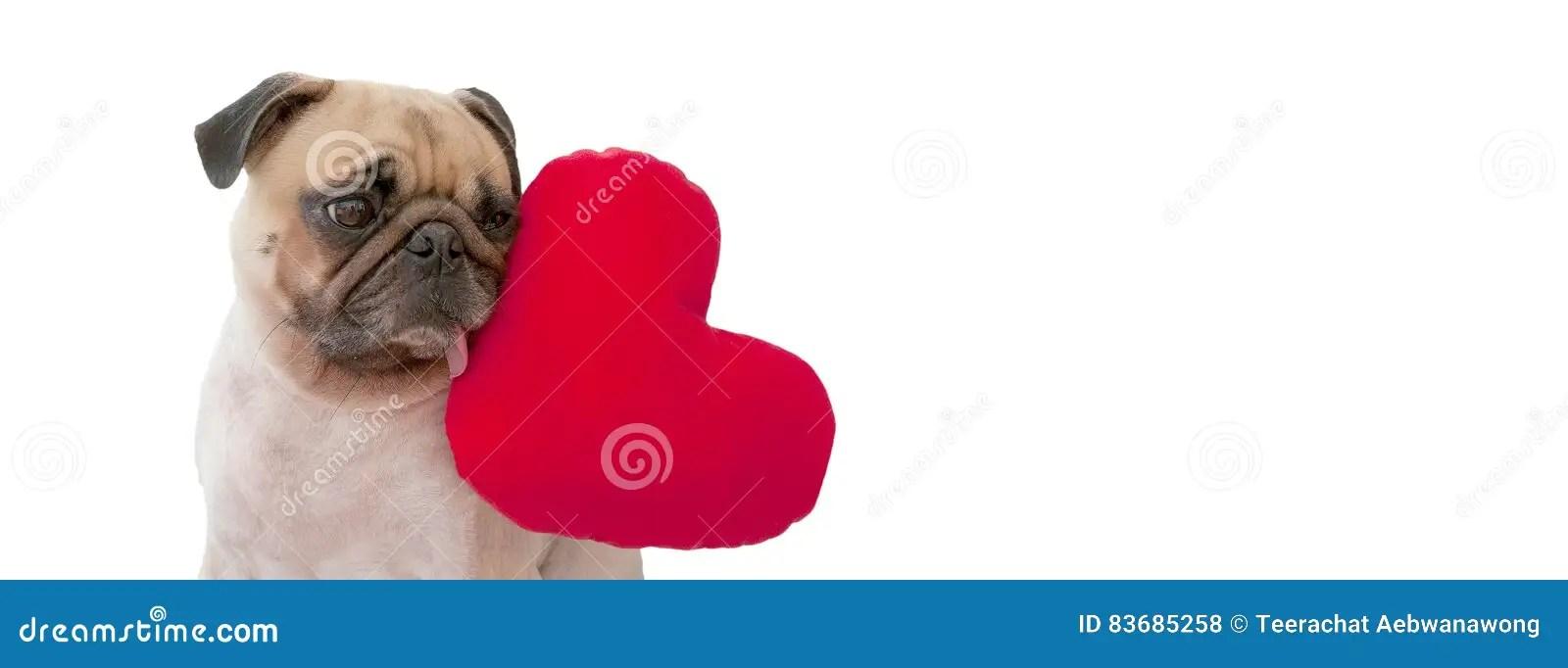 Couple Dog With Heart Stock Photography CartoonDealer