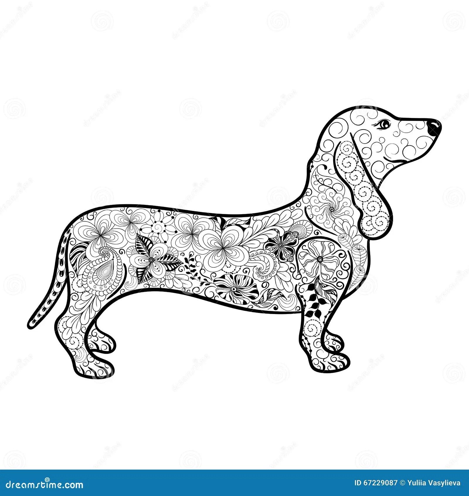 Dachshund Doodle Stock Vector Illustration Of Animal