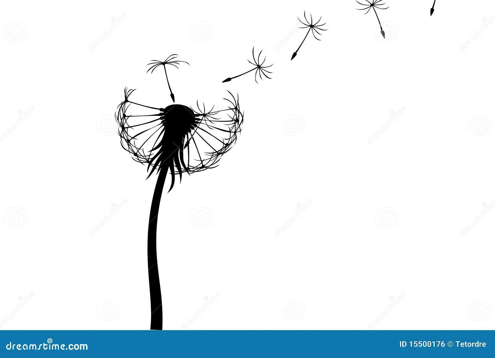 Dandelion Stock Illustration Illustration Of Stem Simple