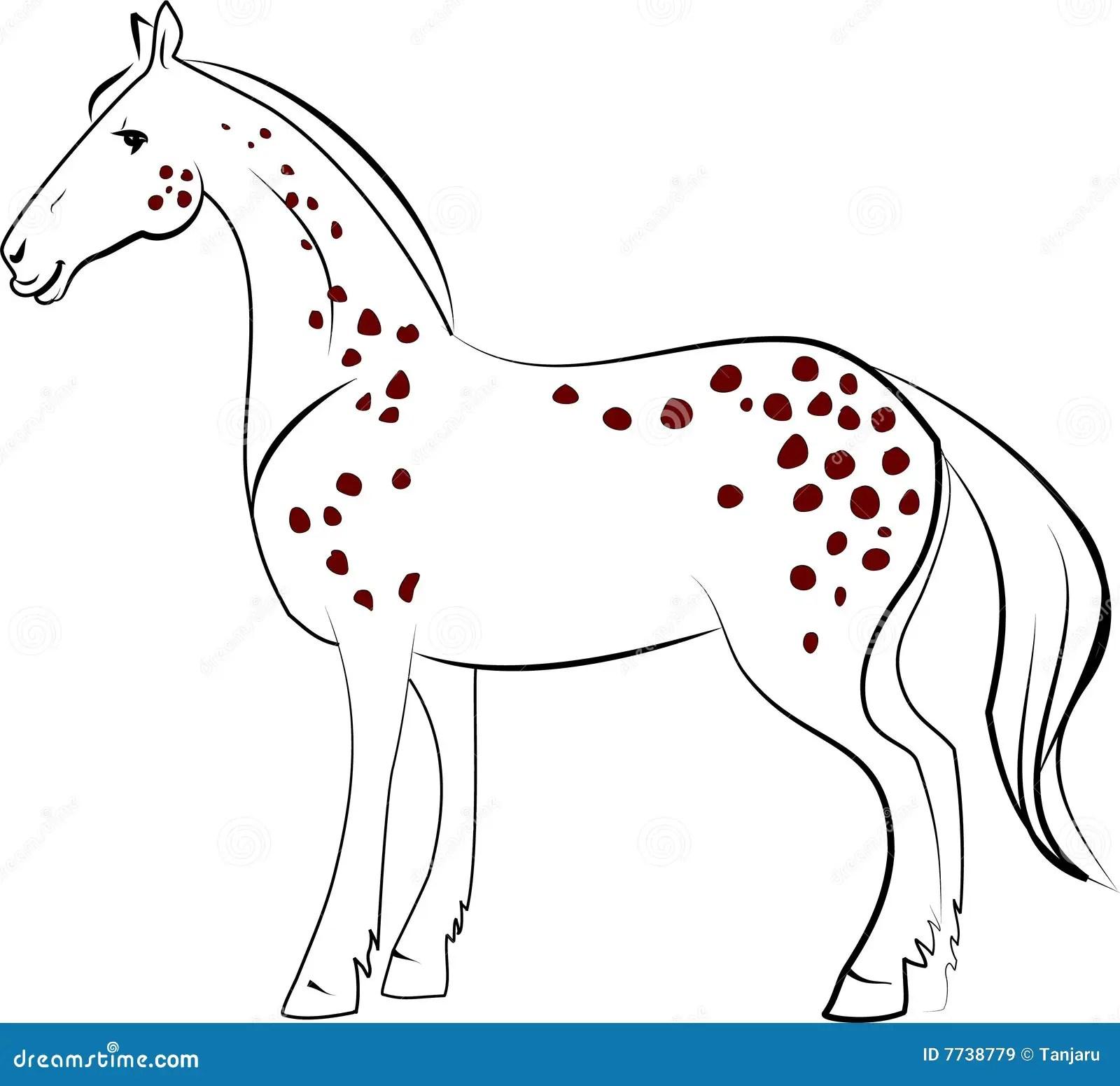 Dapple Horse Stock Vector Illustration Of Riding Grey