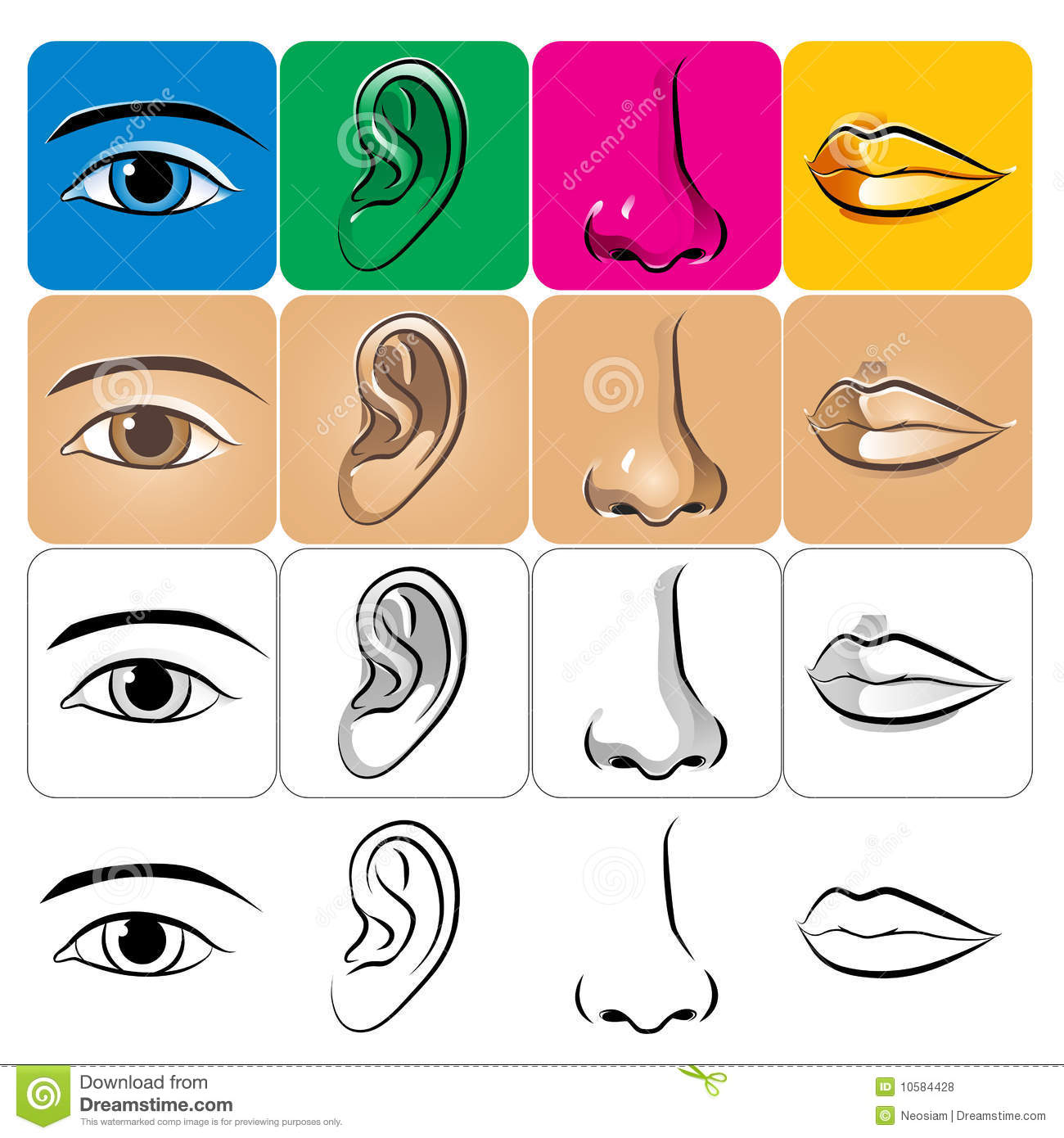 Eer And Ear Worksheet
