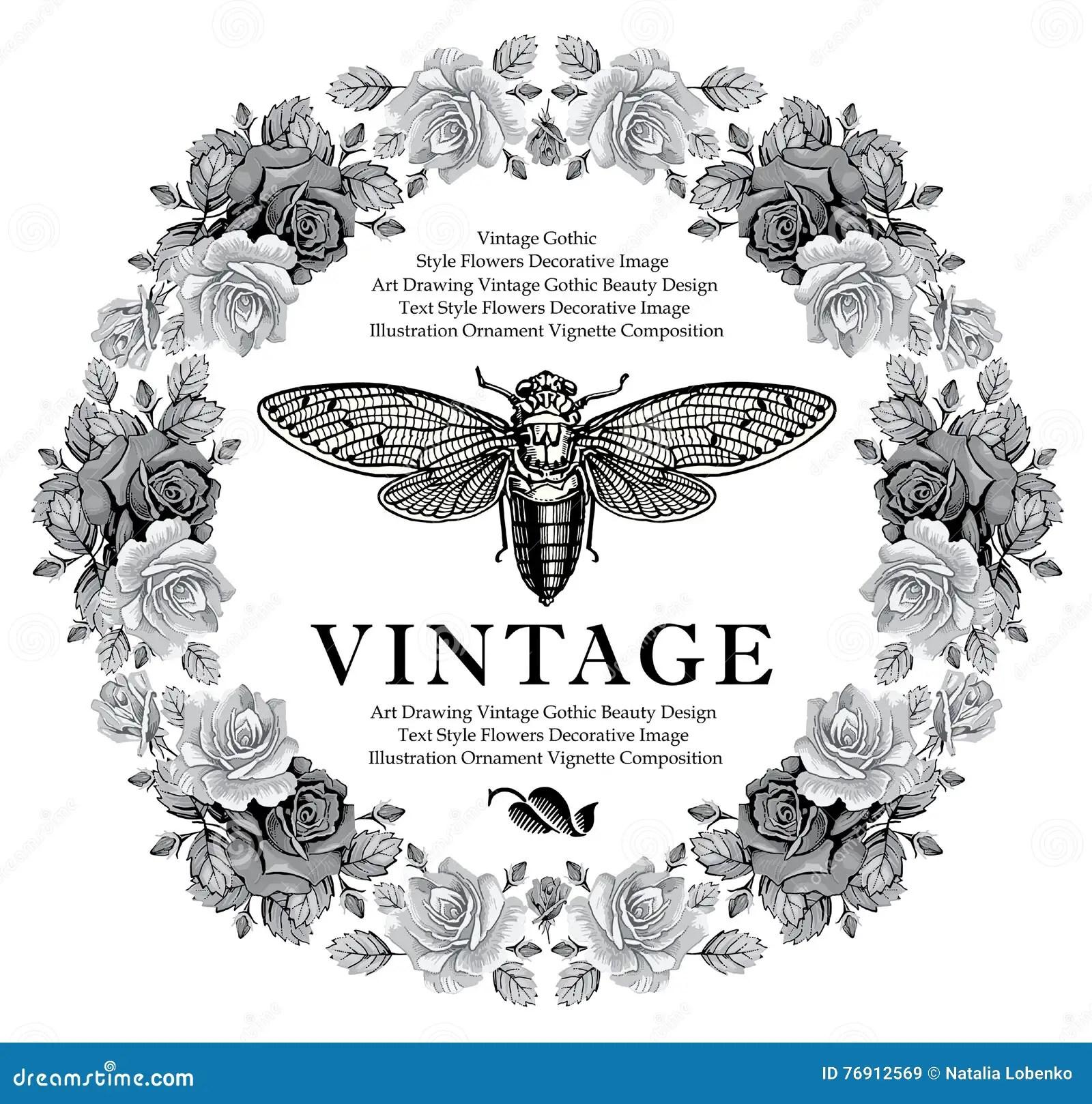 De Vlinders Cicade Barokke Insecten Namen Bloemen Toe