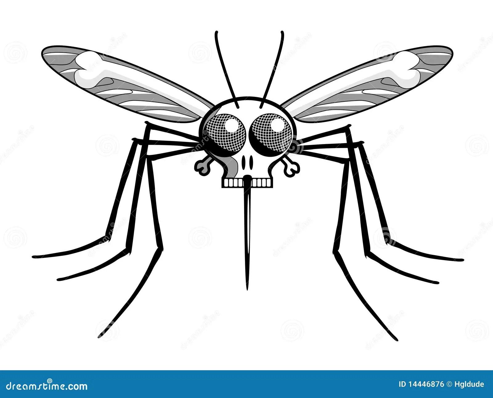 S Head Malaria Mosquito Royalty Free Stock Image
